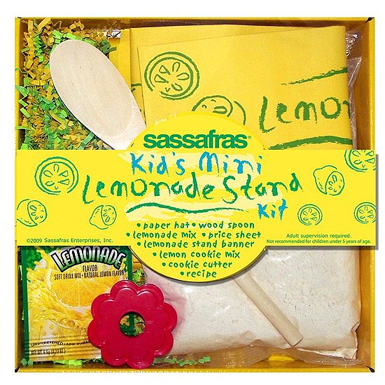Sassafras Mini Lemonade Stand Kit ($12)