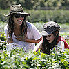 Rachel Bilson Wears Short Shorts to Underwood Family Farm