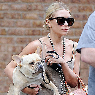 Ashley Olsen Dog Pictures