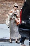 Ashley Olsen was spotted holding her French bulldog in NYC.