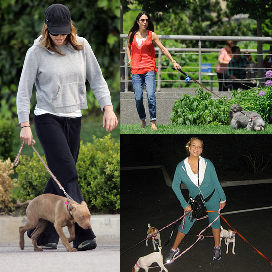 Celebs Who Get Walking Workouts With Their Pooches