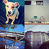 New Instagram Filters in Instagram 2.0