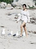 Selena made friends with the seagulls.