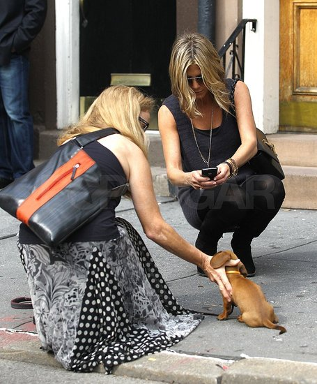 Jennifer Aniston Starts a Big Day With a Small Dog and Good Morning