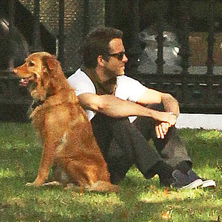 Ryan Reynolds With His Dog Baxter in Boston Pictures