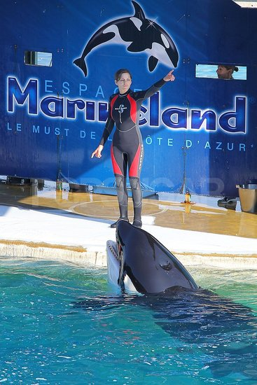 Marion Cotillard gave direction to an orca whale in Antibes, France.