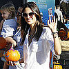Pictures of Celebrities at the Pumpkin Patch