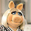 Miss Piggy's Beauty Tips
