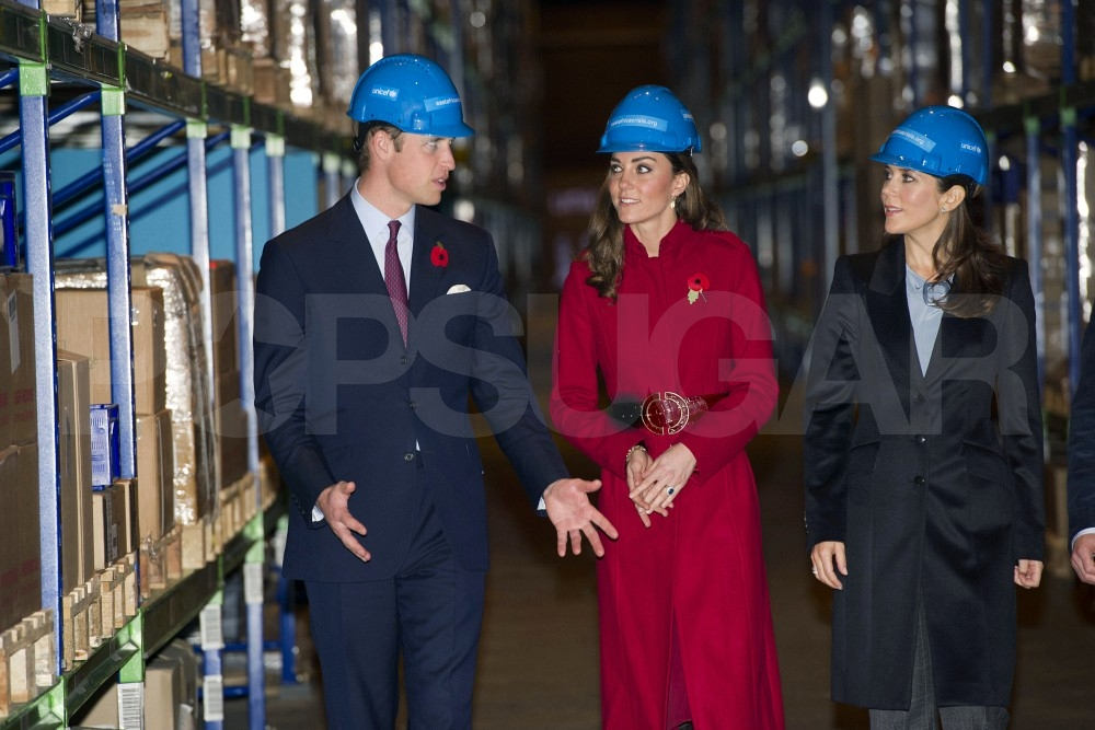 Prince William and Kate Middleton Unite With Danish Royals For UNICEF