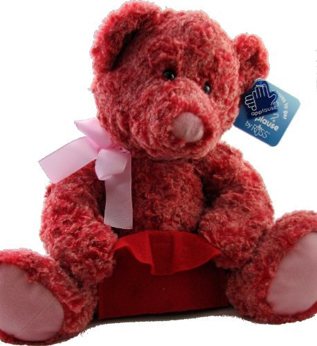 Teddy Bear With Gift Card Holder