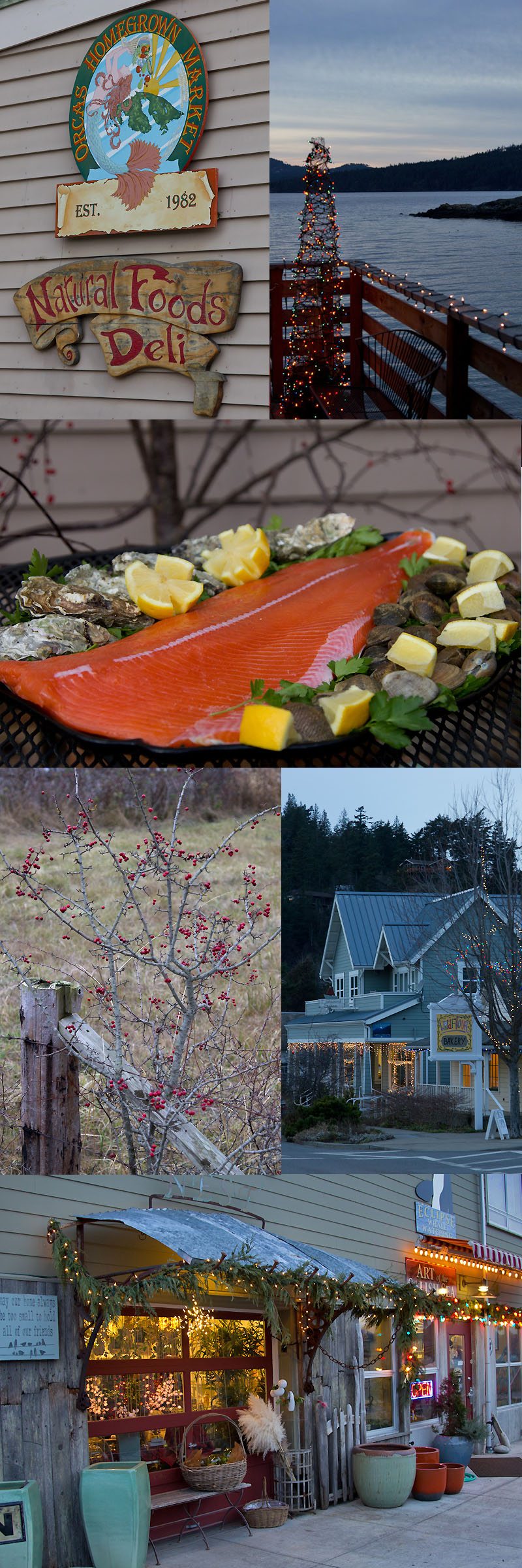 Fresh Seafood from the Orcas Island Home Grown Market