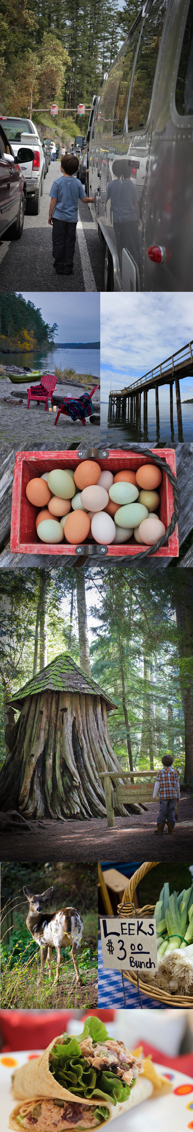 Orcas Island, Farms and a very special Giving Tree