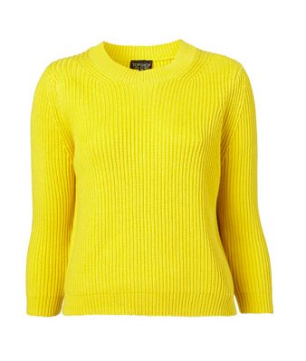 Topshop knitted rib stitch top ($64)
