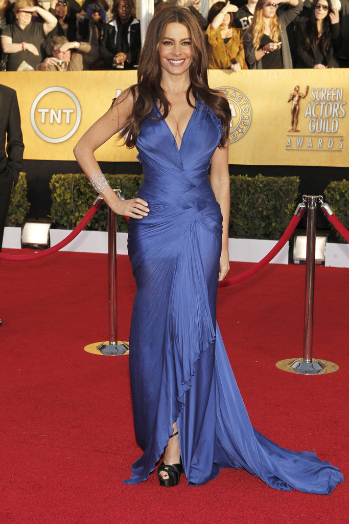 Ever the Hollywood siren, Sofia Vergara wowed in a midnight blue Roberto Cavalli creation and Stuart Weitzman heels in 2011.