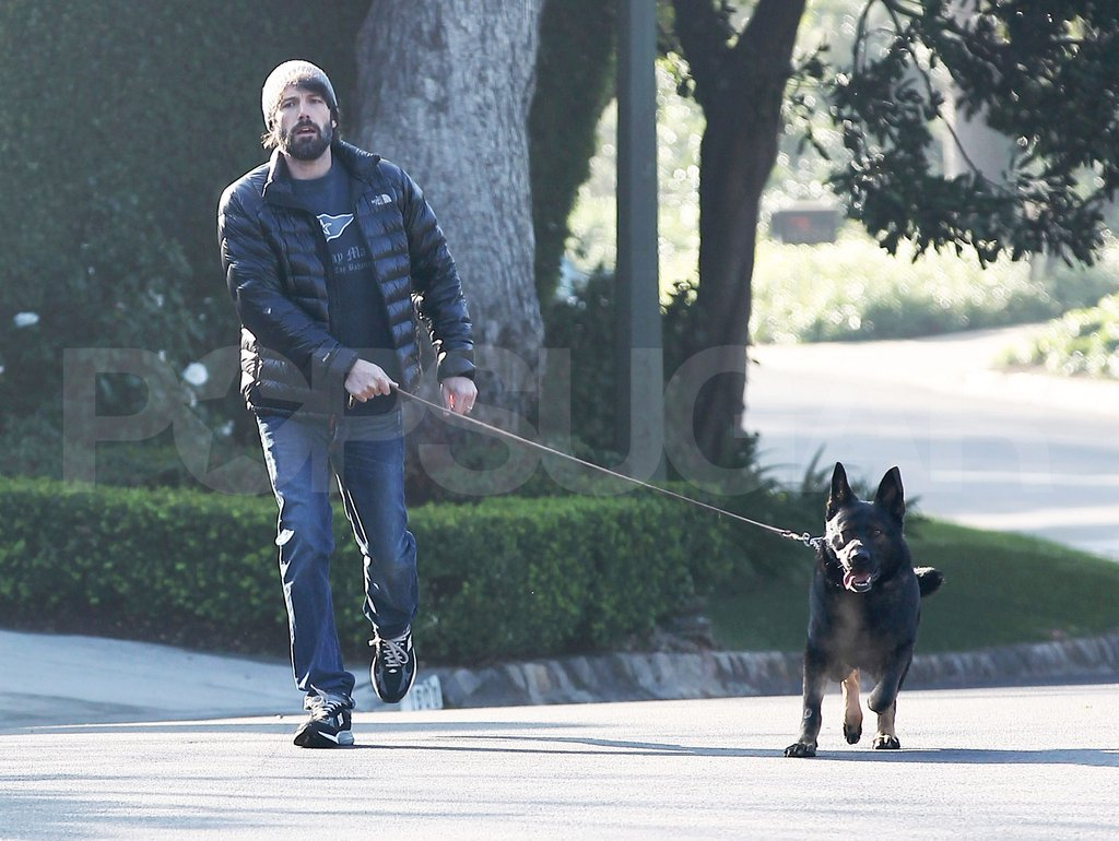Ben Affleck hung out in LA with his family's dog.