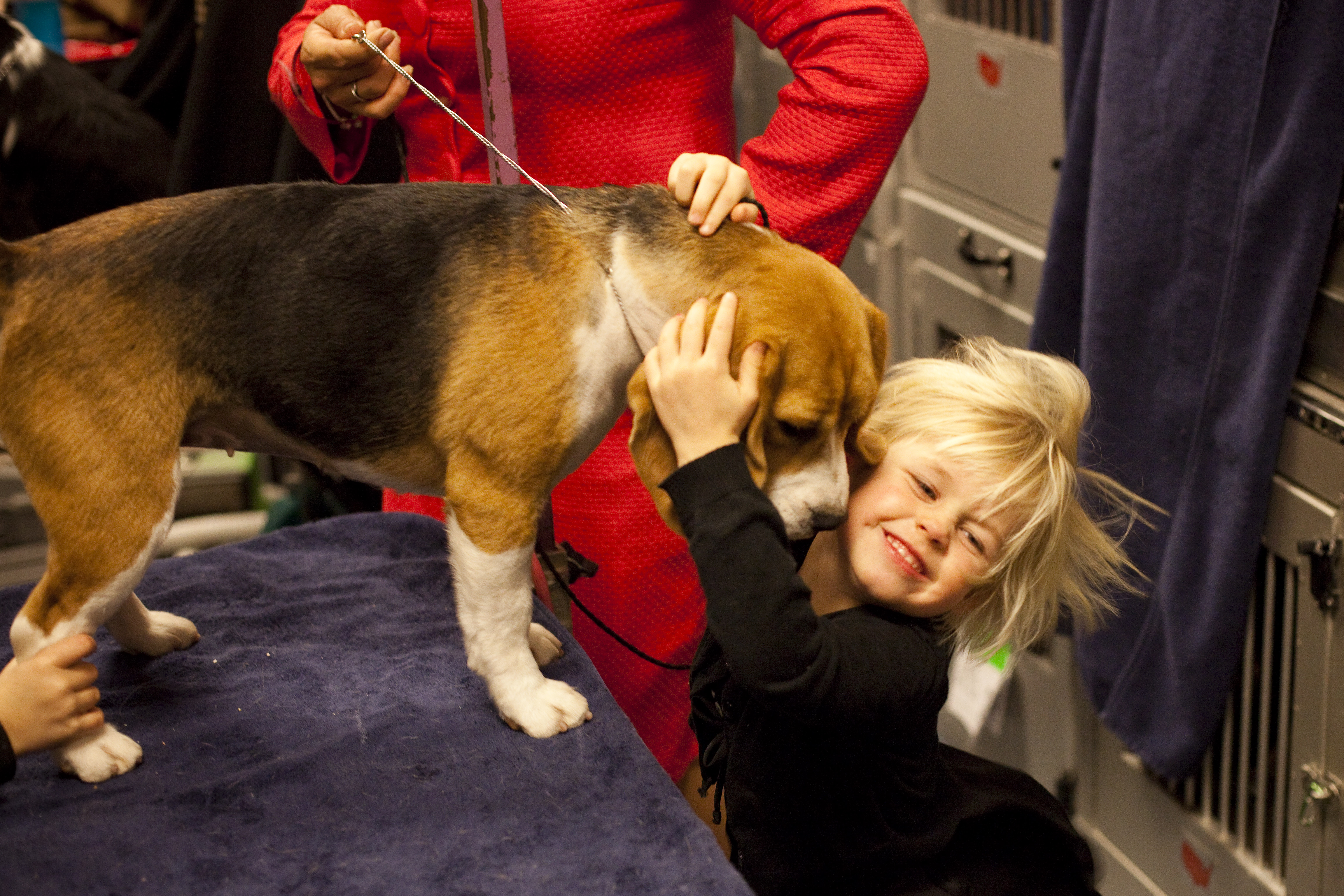 Nothing beats Beagle kisses