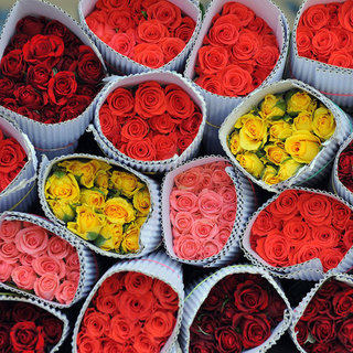 Meaning of Roses: What the Number of Roses Means