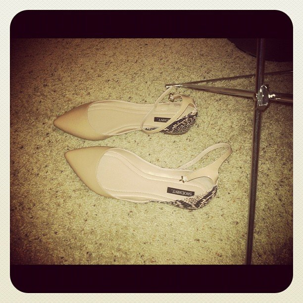 Themelodyofla snapped a pair of enviable ShoeMint flats.