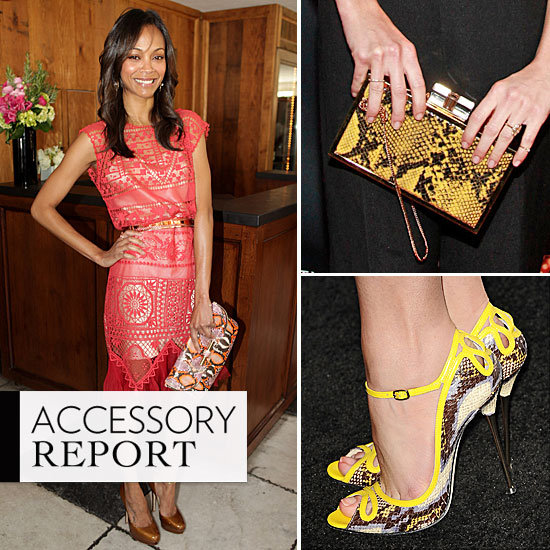 Celebrities Love Snakesking Print Accessories: Zoe Saldana, Jessica Alba, Olivia Palermo, Naomi Watts and more wear the trend!