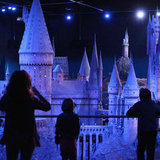 Harry Potter Experience Pictures