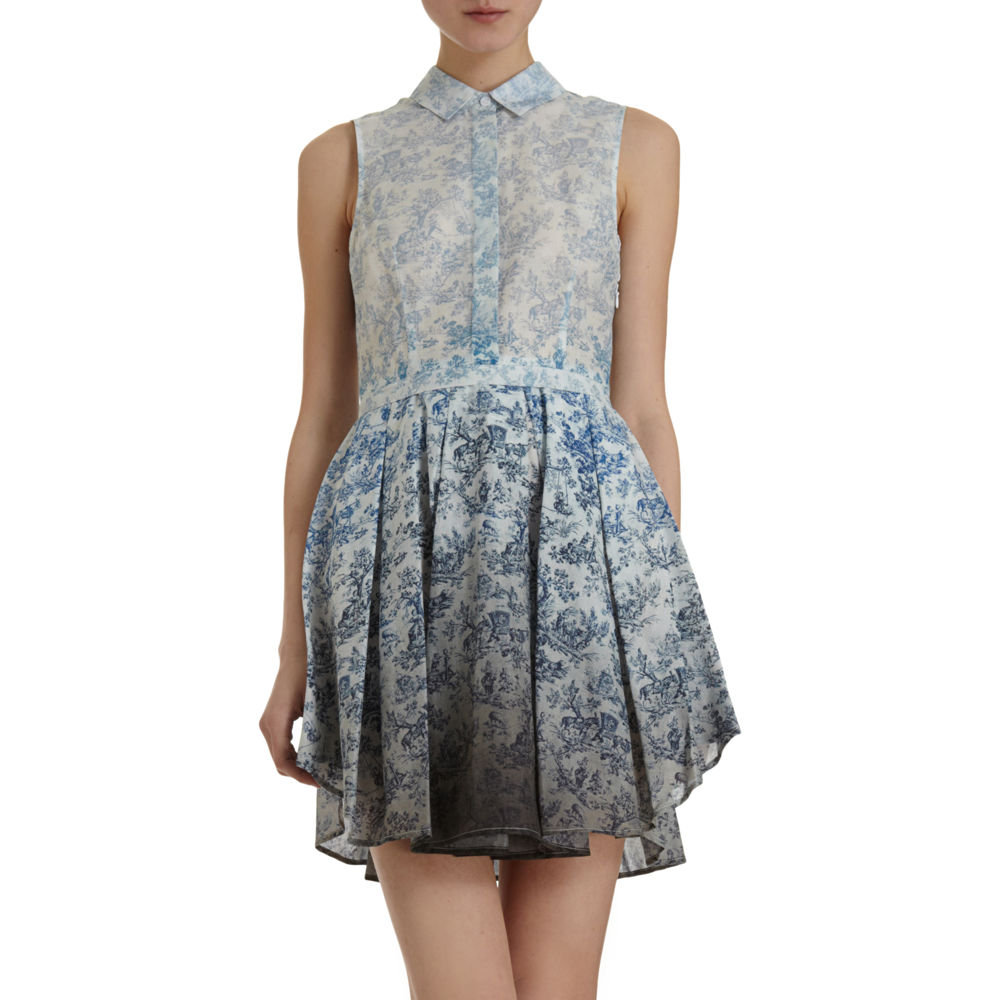 Band of Outsiders Toile Print Dress ($795)