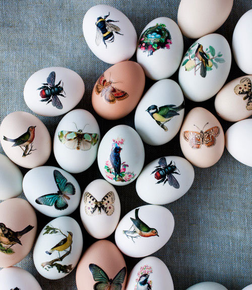 Repurpose temporary tattoo paper to make these fauna eggs.
