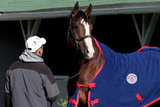 Union Rags