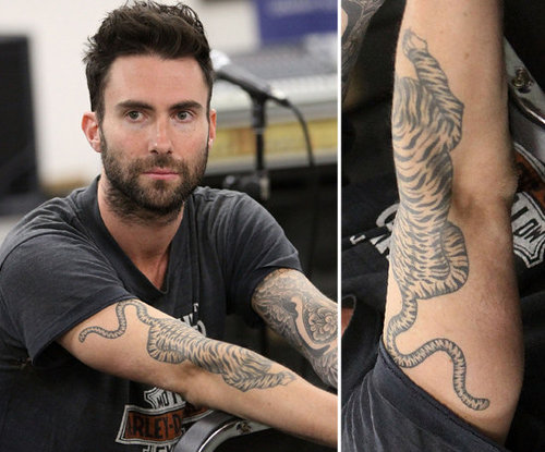 Adam Levine has a tattoo sleeve on his left arm and a large tiger design placed on his right forearm.