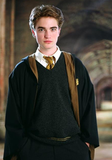 In early 2004, Robert Pattinson filmed a role in Harry Potter and the Goblet of Fire.