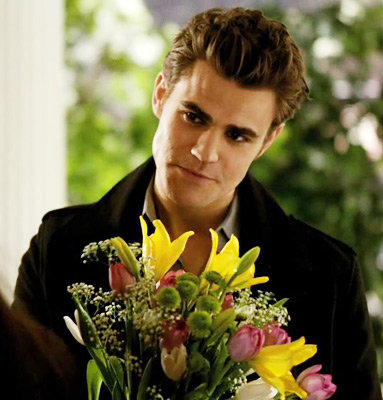 Season 1, Episode 16: There Goes the Neighborhood..Stefan and Elena