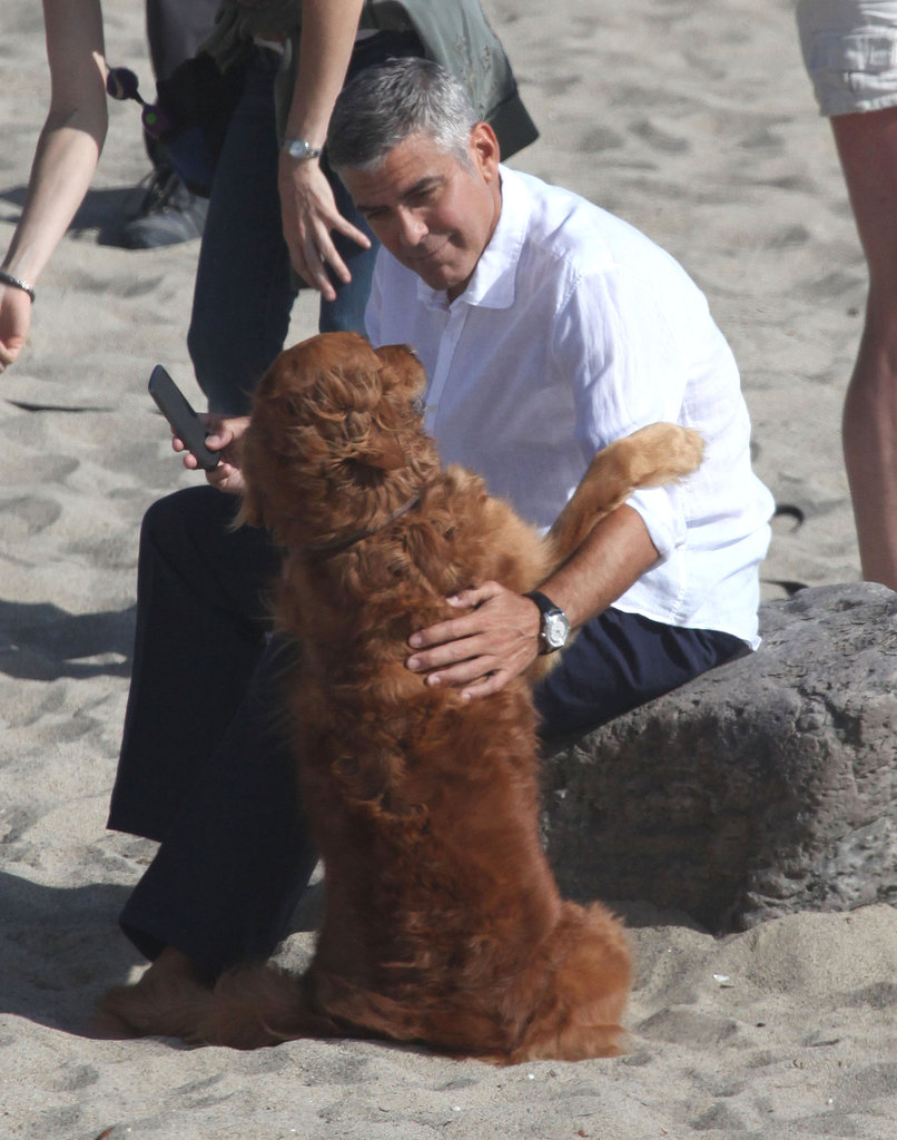 George Clooney Shares a Shoot With an Ideal Costar