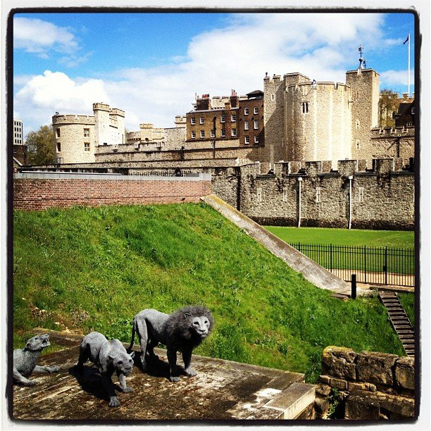 Explore the Grounds of the Tower of London