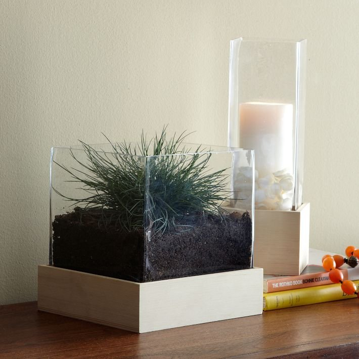 Experiment with creating a sleek terrarium using this large Wood + Glass Hurricane ($29-$49).
