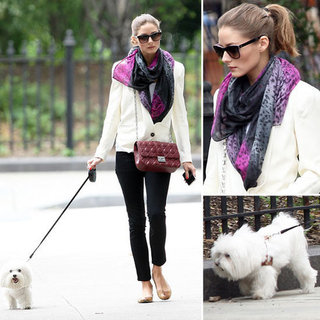 Olivia Palermo Walks Her Dog Mr Butler In Style in NYC: Snoop and Shop Her Off-Duty Street Style Look!