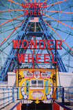 Tons of people posed in front of this cool Wonder Wheel photo backdrop — see our cute picture here!