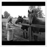 Nicky Hilton spent time with horses. Source: Instagram user nickyhilton