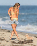 Ashley Tisdale adjusted her denim shorts over her green bikini as she played on the beach in Malibu with her dog.