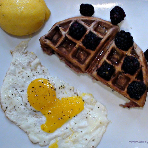 The tastes of Summer are about to invade a kitchen near you. Invigorate your morning with these lemon and blackberry waffles. The combination of citrus and tangy berries is sure to dissolve any case of the Mondays.