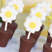 These daisy chocolate cups (created by the übertalented Peter Callahan) are a fun dessert to display!