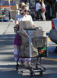 Hilary Duff pushed a grocery cart to her car in LA.