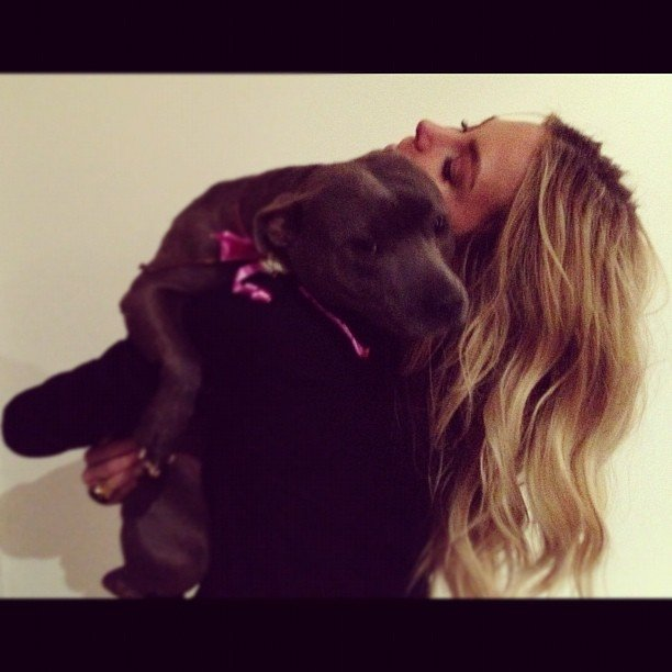 Jennifer Hawkins returned home to cuddles from her dog, Milly. Source: Instagram user jenhawkins_