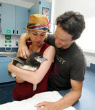 Anna Paquin and Stephen Moyer met a baby penguin at SeaWorld San Diego in July 2009.
