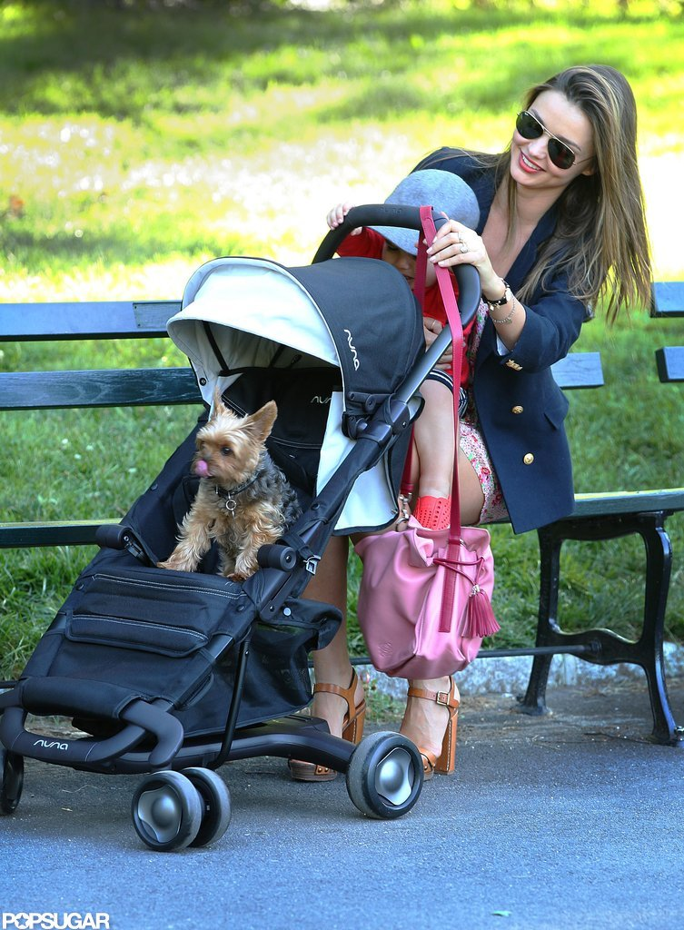 Miranda Kerr brought Flynn and Frankie to a park.