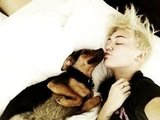 Miley Cyrus shared a morning kiss with her pup, Happy. Source: Twitter user MileyCyrus