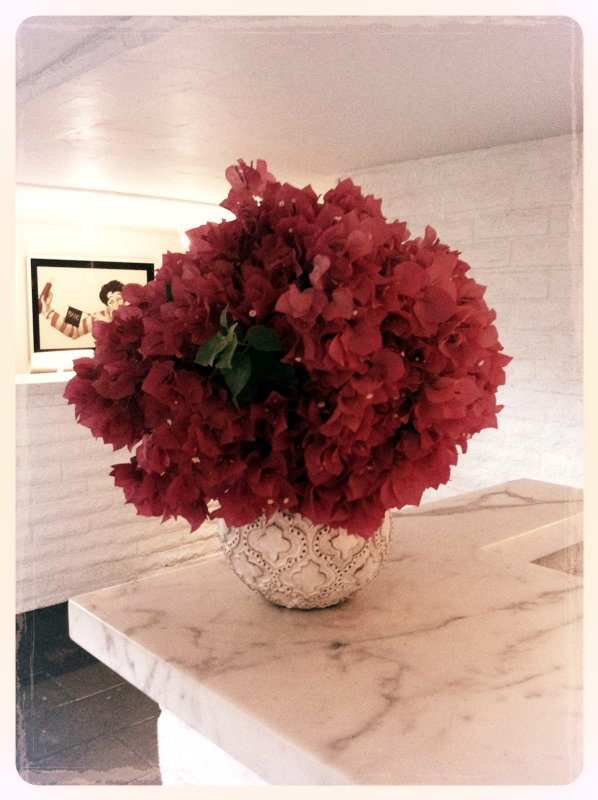 Vines of magenta-hued bougainvillea grow throughout the grounds. In addition to the novel idea of creating large, tightly packed bouquets, the white-coated brick and elegant marble slabs at the front desk allow the flowers to pop.