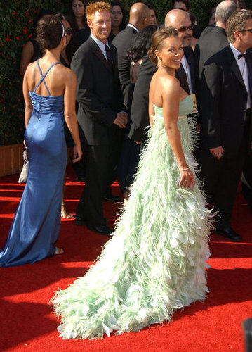 Vanessa Williams sashayed down the red carpet in 2007 wearing a feathered gown.