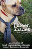 Fifteen Shades For Grey