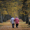 Fall Leaves and Romance | Pictures