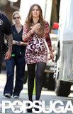 Sofia Vergara wore a leopard dress on the set of Modern Family in LA.