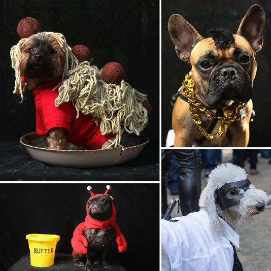Dogs in Disguise: 20 Cute Costume Ideas From an NYC Halloween Parade